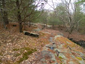 devil's foot ledge